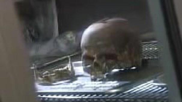 Linda Sherman Skull 1